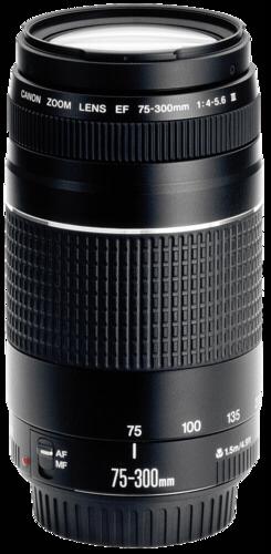 Canon EF 75-300mm f/4.0-5.6 DC III