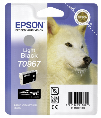 Epson ink cartridge light black T 096
