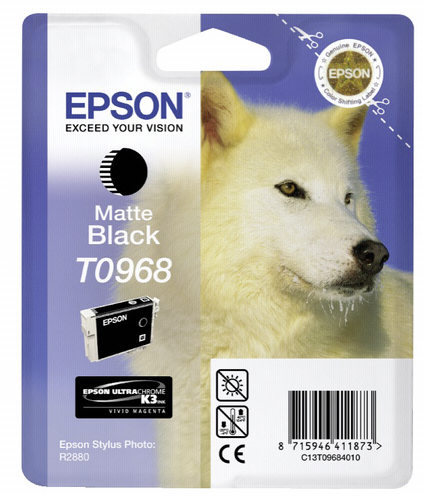 Epson ink cartridge matte black T 096