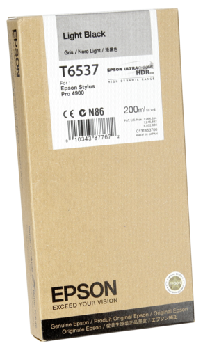 Epson Cartridge T6537 Light Black