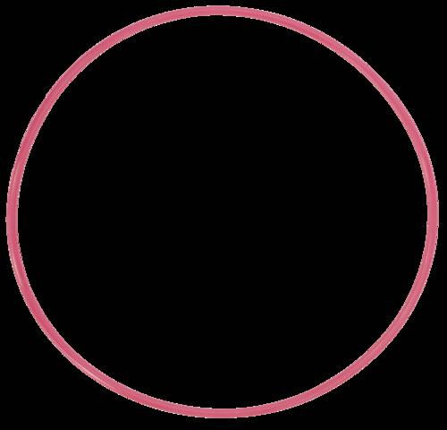Olympus POL-E 301 O-Ring