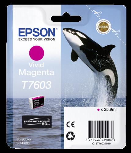 Epson Cartridge T7603 Vivid Magenta