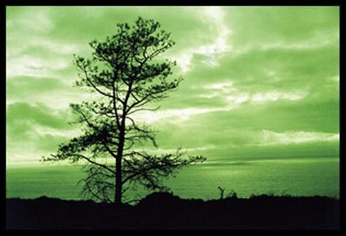Cokin A004 Green Resin Filter for Black & White Film