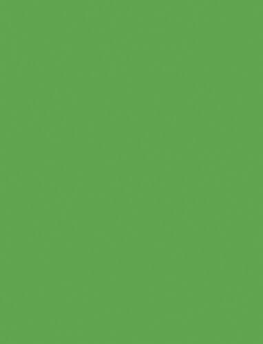 Bresser 54 Background Paper 1.35x11m Green