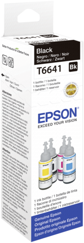 Epson Cartridge T6641 Black