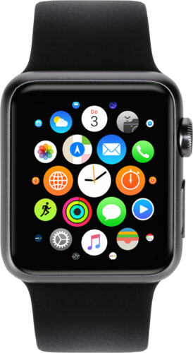 Apple Watch 42mm Grey Alu Case with Black Sport Band