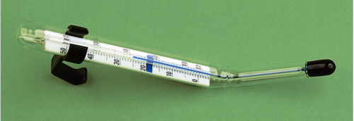 Kaiser Tray Thermometer