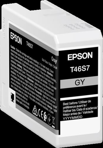 Epson Cartridge T46S7 Ultrachrome Pro 10 grey